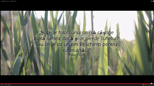 NEW: Pociii feat. Iulia &#8211; 1nPacat 2013 - Comentarii: 12